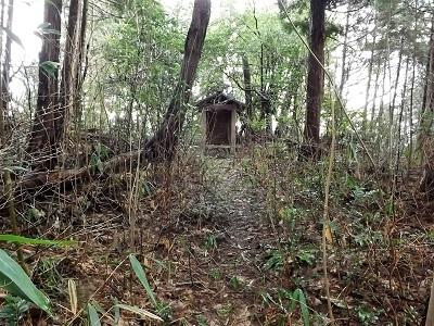 福井市片山真光寺城の踏査 (4)