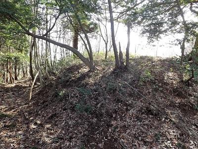 越前市荒神ヶ峰城砦の踏査 (5)