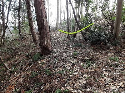 越前市荒神ヶ峰城砦の踏査 (7)