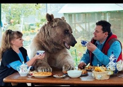 Unbelievable Russian Family Adopted a Huge 7ft Grizzly Bear