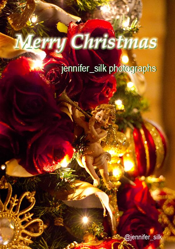 TDS クリスマスウィッシュ 2016_1