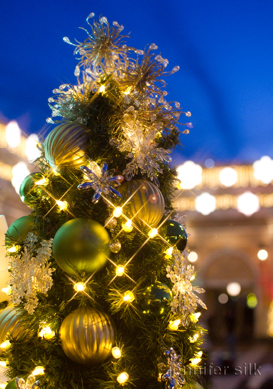 TDS クリスマスウィッシュ 2016_25