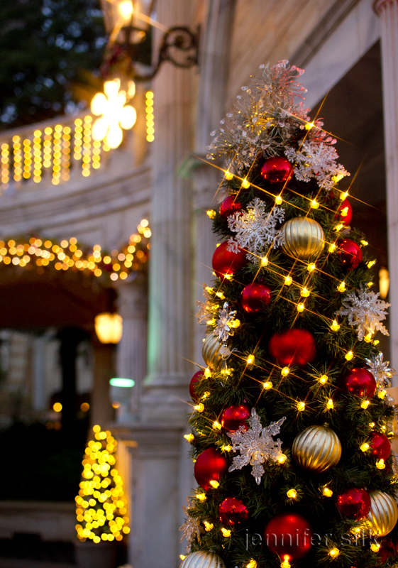 TDS クリスマスウィッシュ 2016_27