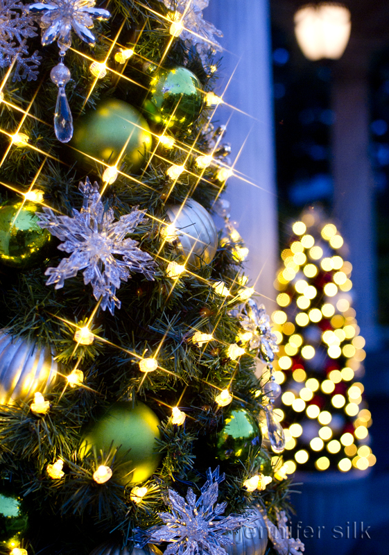 TDS クリスマスウィッシュ 2016_29
