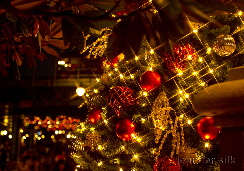 TDS クリスマスウィッシュ 2016_3
