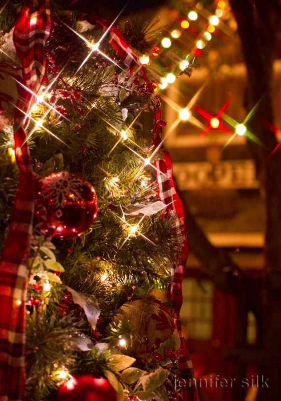 TDS クリスマスウィッシュ 2016_44