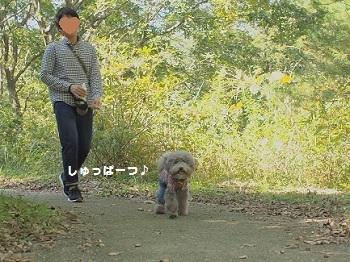 ひたち海浜公園20161015-2