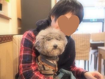 連休最終日20170109-1