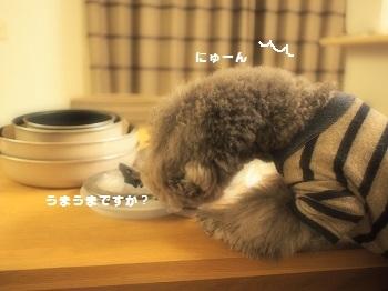 連休最終日20170109-6