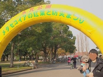 水元公園20161204-1