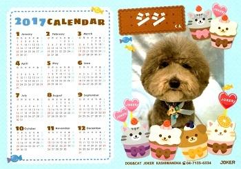 ジジさんカレンダー2017