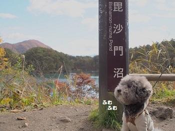 五色沼20161102-6