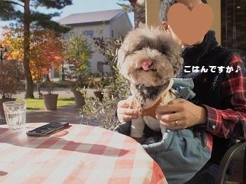 福島ランチ20161102-4