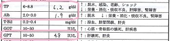 ジジ血液検査20160615
