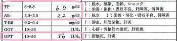 ジジ血液検査20160717