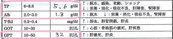 ジジ血液検査20160910