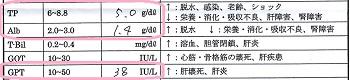ジジ血液検査20170122