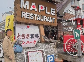 栃木旅行ランチ20160416-7