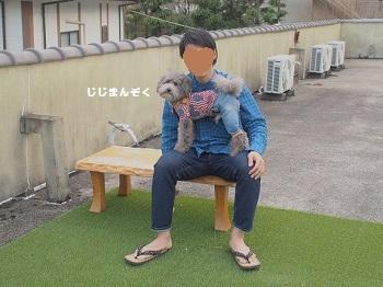 絆ドッグラン20160416-9