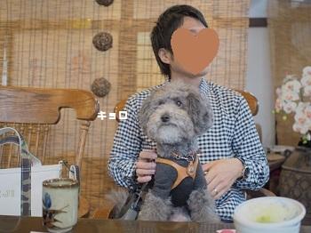 栃木ランチ20160417-3