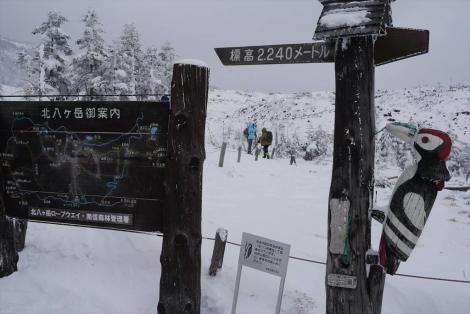 赤横岳 (38)_R