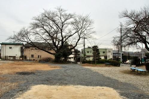 tsuguomomo_haraichi_01-6.jpg