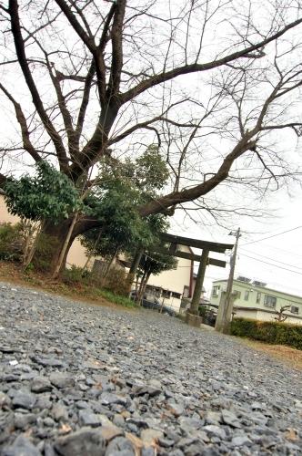 tsuguomomo_haraichi_01-7.jpg