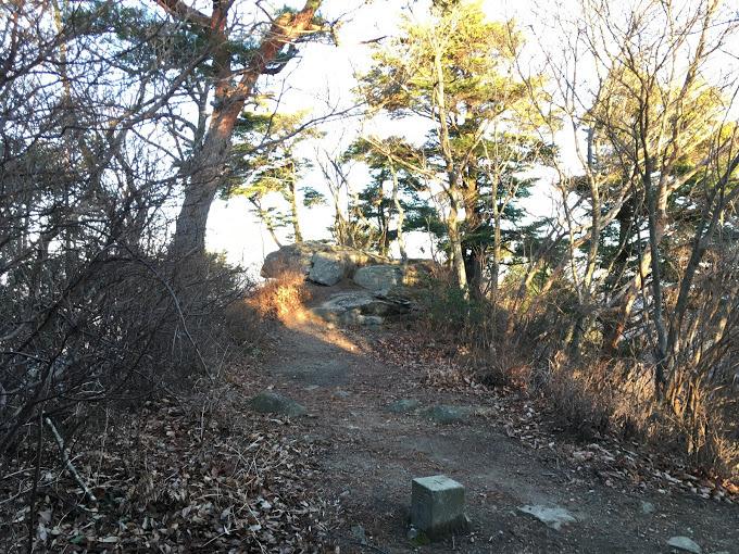 千丈寺山/山頂の様子