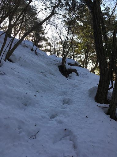 高岳/雪道2