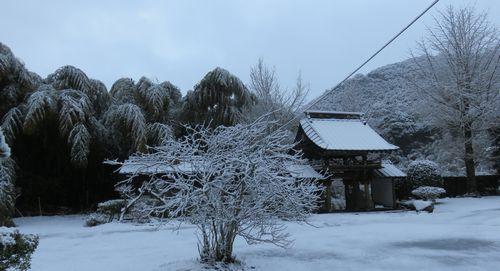 20161219初雪s