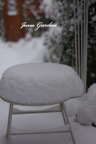 170115雪