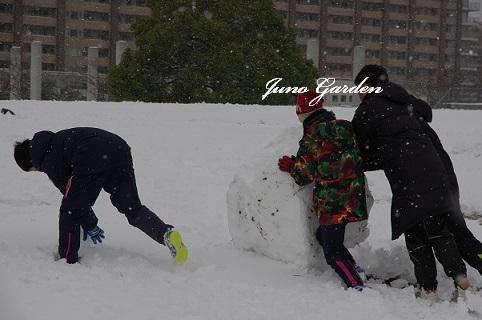 雪だるま170115