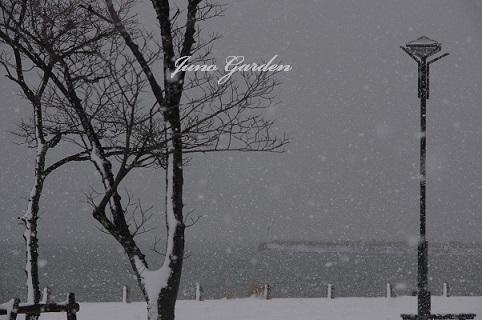 1湖畔雪17115