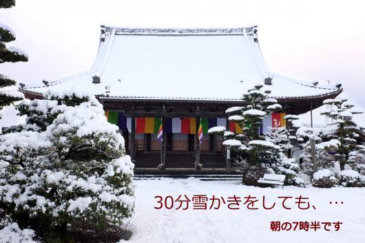 改 朝の雪 DSCF1186_convert_20170119115907