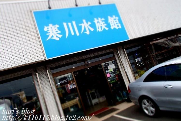 寒川水族館 (2)