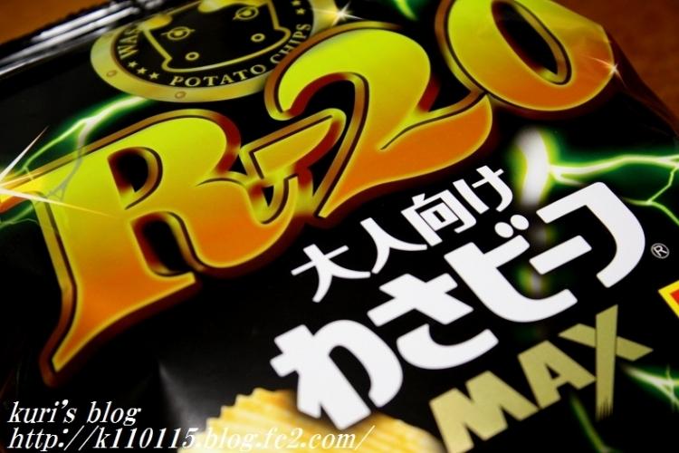 2017 R20 (1)