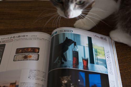 小花雑誌ページ