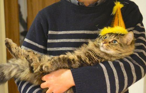 レオ帽子だっこ