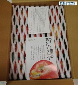 サンデー 葉とらずリンゴ01 201608