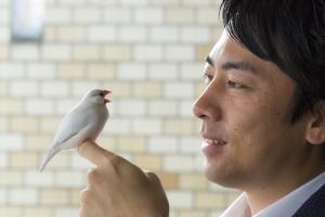 小泉進次郎と文鳥