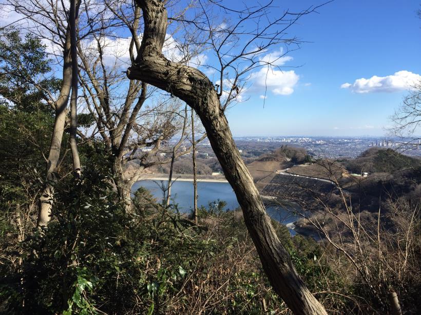 minenoyakushi95.jpg