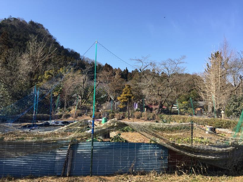 tokurazyo132.jpg