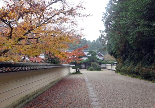 161201円照寺
