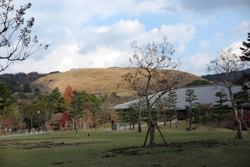 161209若草山
