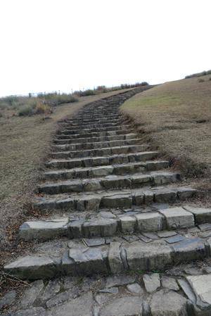 161209階段2