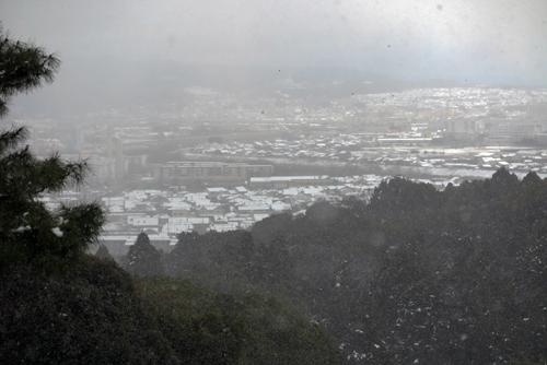 170115雪景色