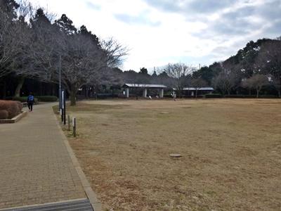 増尾城_公園