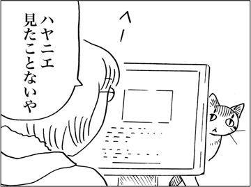 kfc00734-3
