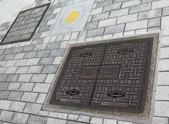 道の駅『星のふる里・ふじはし』 量水器 マンホール?
