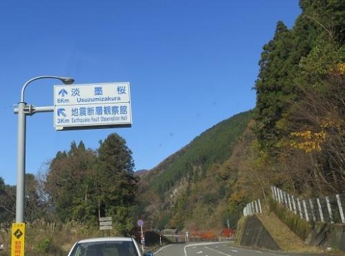 岐阜 薄墨桜 地震断層観察館の案内看板